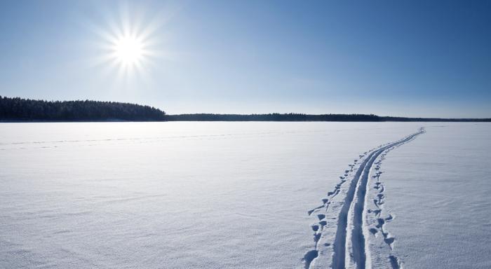 lumisokeus on luonnon oma puolustuskeino